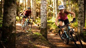 Női mtb és cross kerékpárok